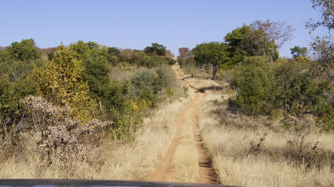 safari jeep trail