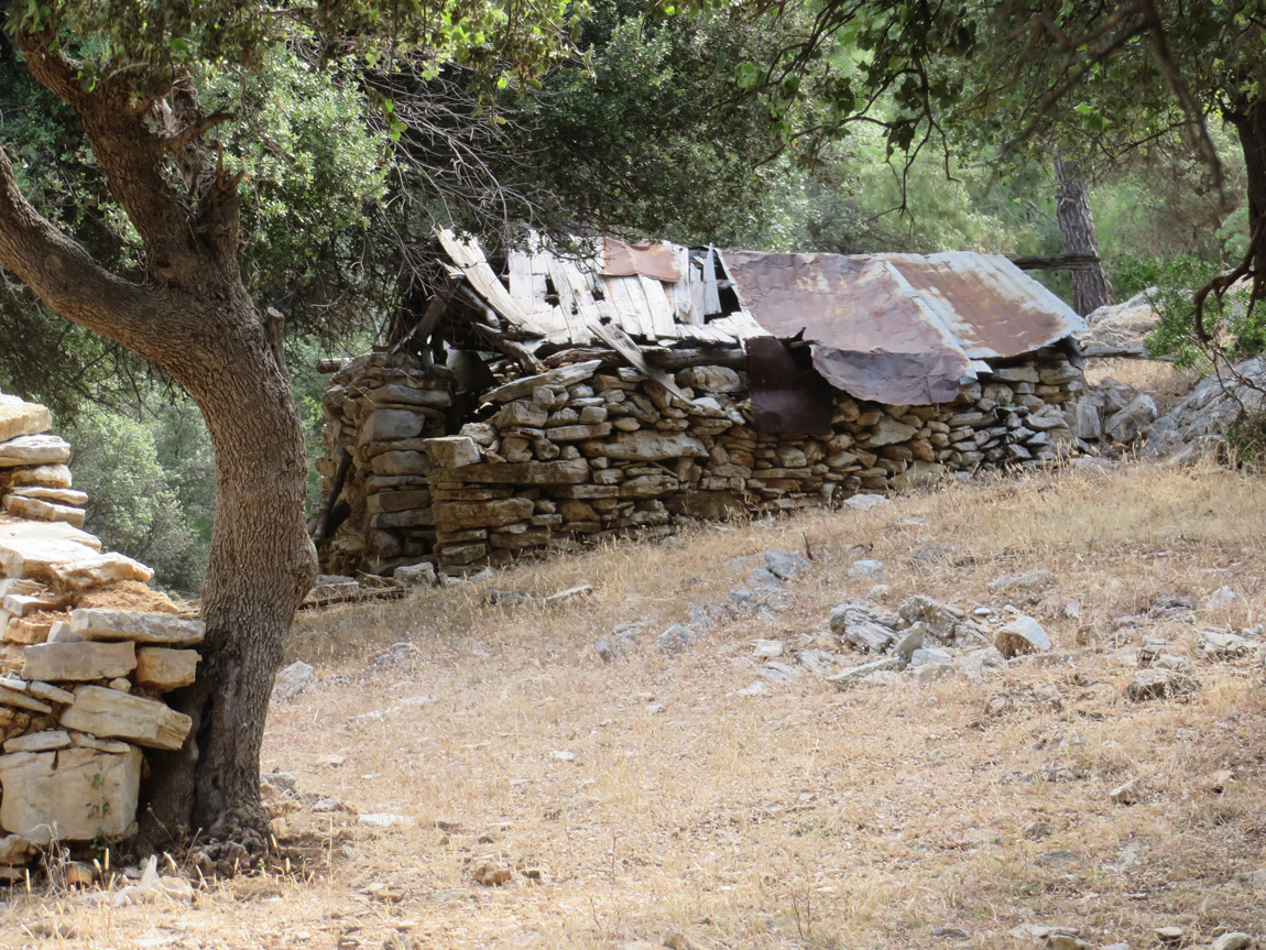 ruins of a house