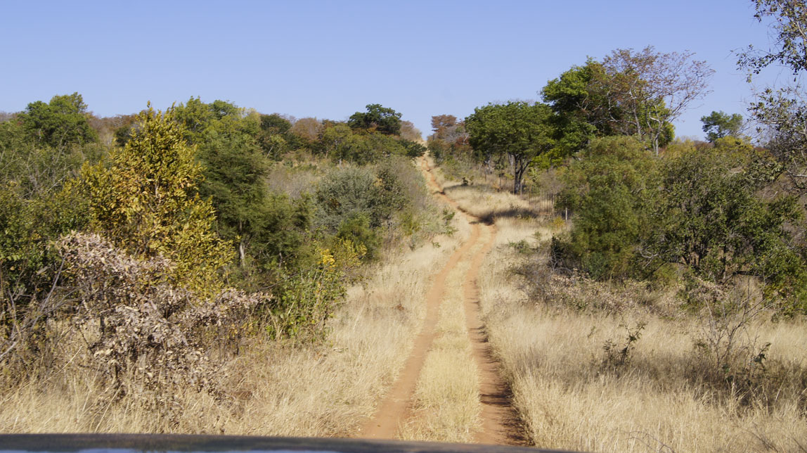 safari jeep trail