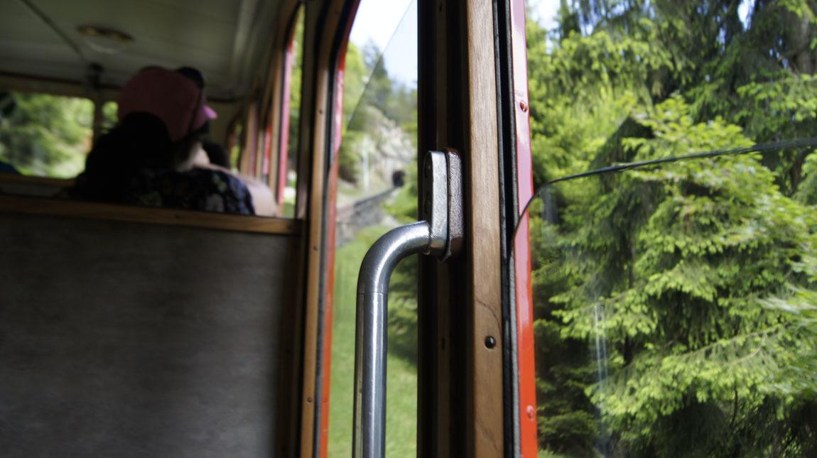 on the cogwheel train