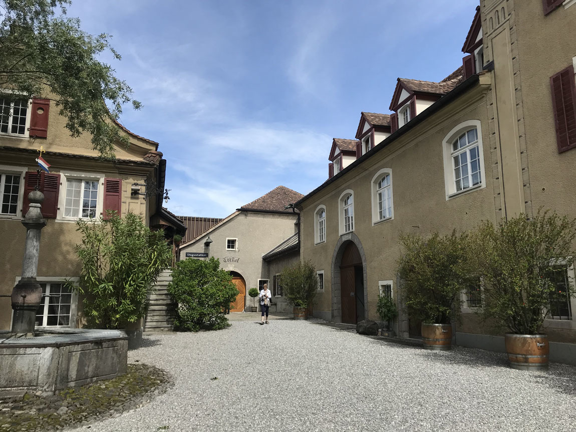 Schloss Salenegg winery
